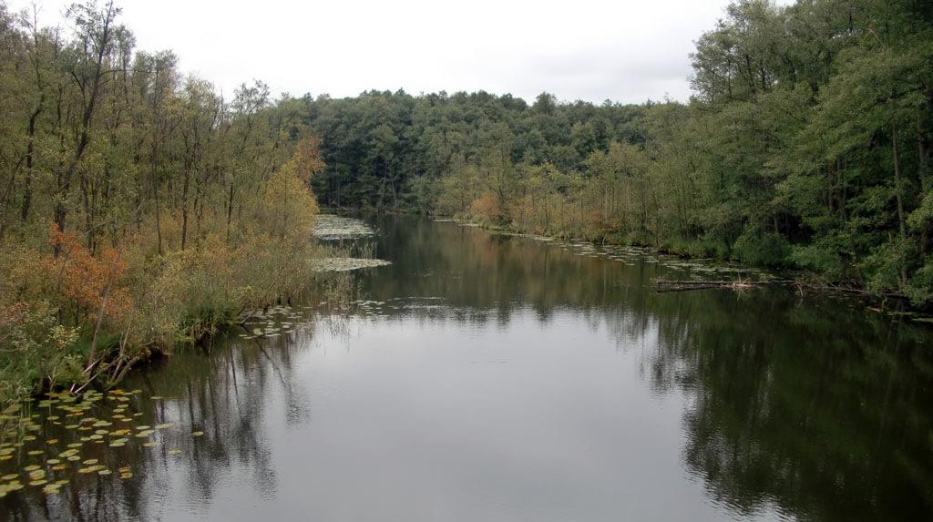 Uferaufnahme